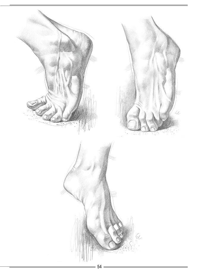 手 脚的素描