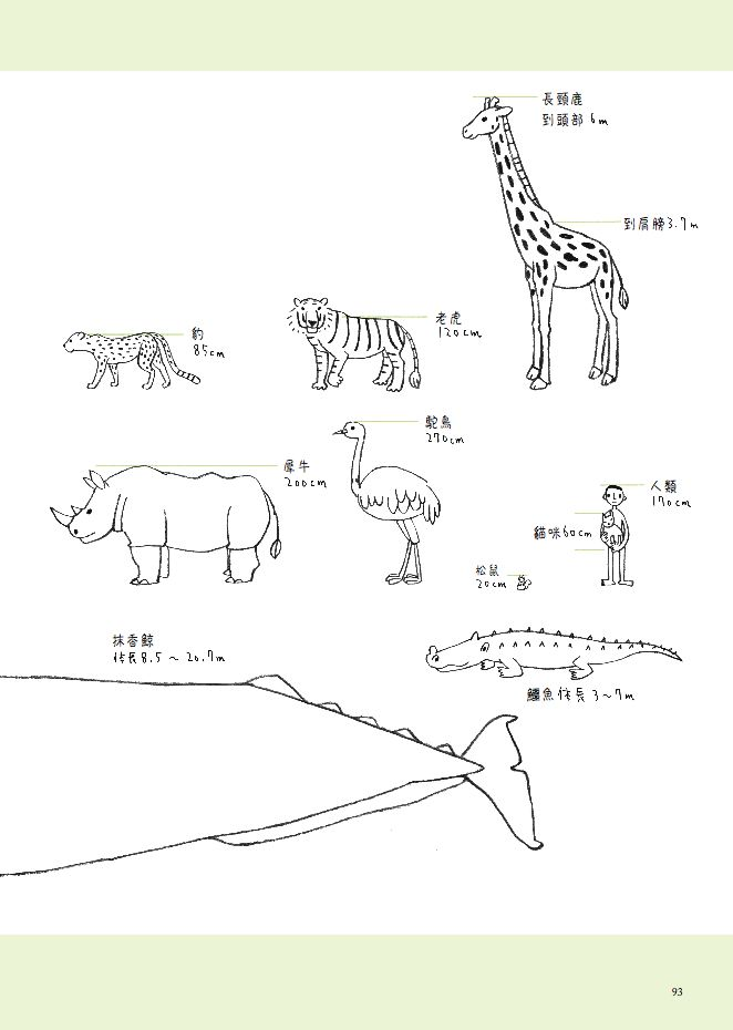 学画动物-简笔画教室-彩色蒙纸/吴梦雪